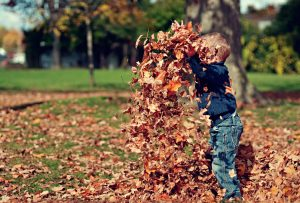 child playing with leaves outside in daytime